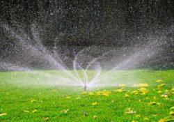 kak polivat gazonnuyu travu 250x175 - Как поливать газонную траву