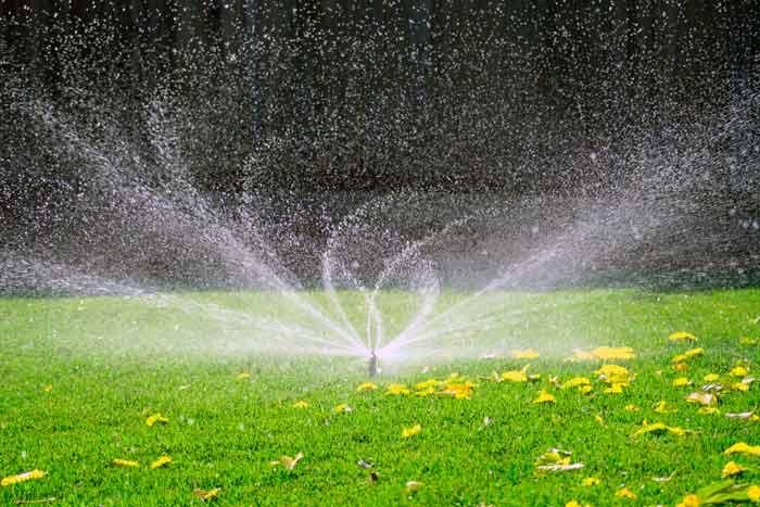 kak polivat gazonnuyu travu - Как поливать газонную траву