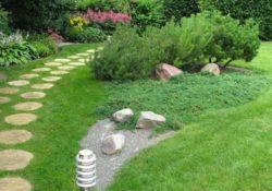 kak pravilno posadit gazonnuyu travu 250x175 - Как правильно посадить газонную траву