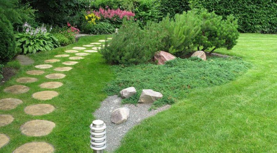 kak pravilno posadit gazonnuyu travu - Как правильно посадить газонную траву