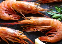 krevetki 250x175 - Как правильно выбирать креветки