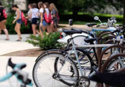 v chem polza katanija na velosipede 250x175 - В чем польза катания на велосипеде?